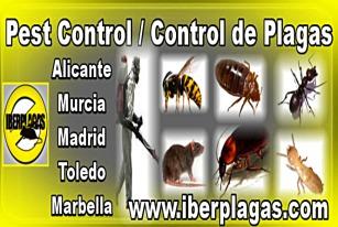 Control de Plagas Torrevieja