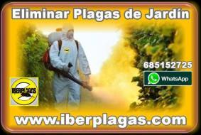 Fumigar jardines en Alicante y Murcia