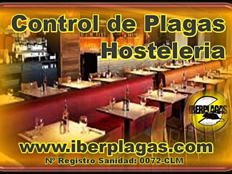 Control de plagas en Hostelería