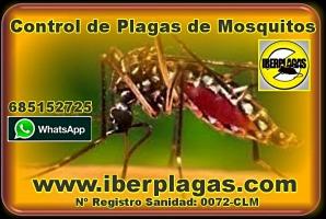 Eliminar Mosquitos