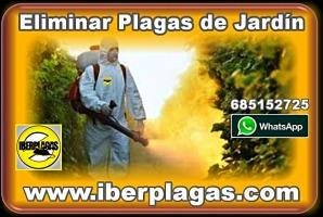 Eliminar plagas de jardin en Alicante y Murcia