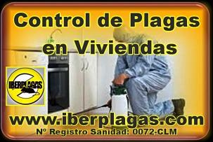 Desinfectar viviendas en Alicante y Murcia