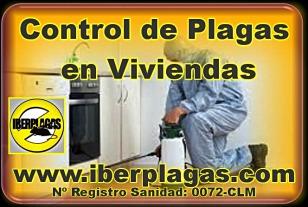 Eliminar plagas en viviendas de Murcia