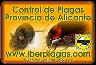 Empresa de control de plagas en Alicante