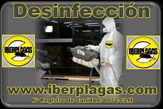 Empresa de desinfección en Murcia
