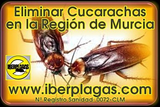 Eliminar cucarachas en Murcia