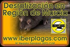 Desratización en Región de Murcia