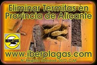 contra termitas