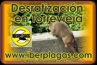 Desratización en Torrevieja