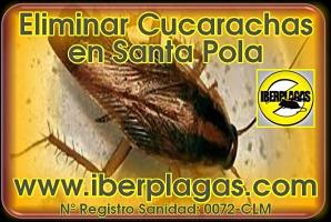 eliminar cucarachas en Santa Pola