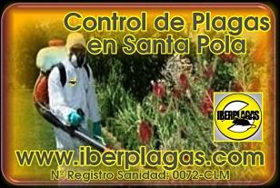 Empresa de Control de Plagas en Santa Pola