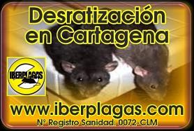 Desratización en Cartagena