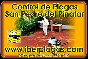 Control de Plagas en San Pedro del Pinatar