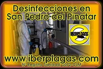 Desinfecciones en San Pedro del Pinatar