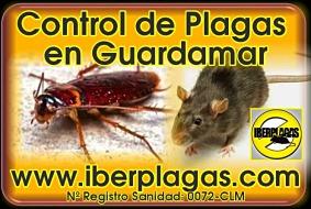 Control de Plagas en Guardamar