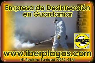 Desinfecciones en Guardamar