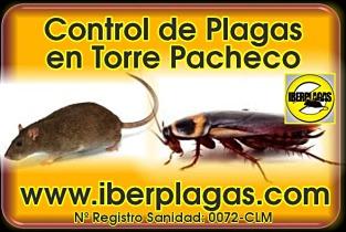 Control de Plagas en Torre Pacheco