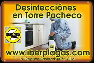 Desinfecciones en Torre Pacheco