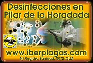Desinfecciones en Pilar de la Horadada