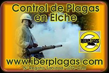 Control de Plagas en Elche