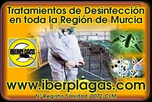 Desinfecciones en Murcia