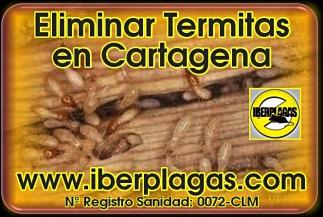 Eliminar Termitas en Cartagena