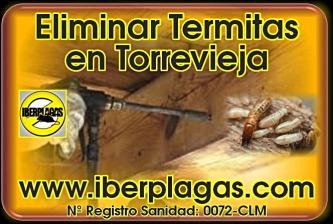 Eliminar termitas en Torrevieja