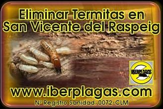 Eliminar Termitas en San Vicente del Raspeig