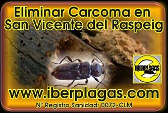 Eliminar Carcoma en San Vicente del Raspeig