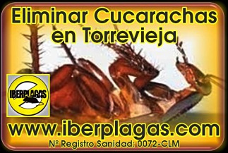 Eliminar Cucarachas en Torrevieja