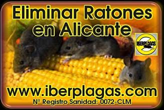Eliminar Ratones en Alicante