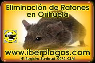 Eliminar ratones en Orihuela
