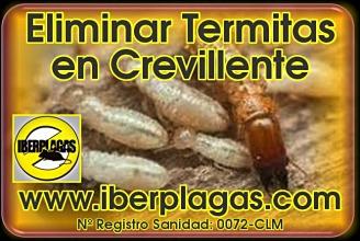 Eliminar termitas en Crevillente