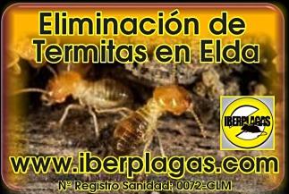 Eliminar termitas en Elda