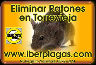 Eliminar ratones en Torrevieja
