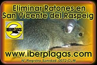 Eliminar Ratones en San Vicente del Raspeig