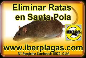 Eliminar ratas en Santa Pola