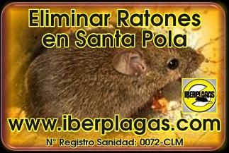 Eliminar ratones en Santa Pola