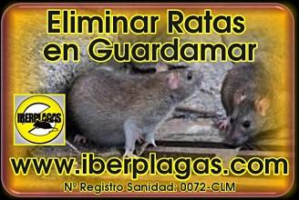 eliminar ratas en Guardamar