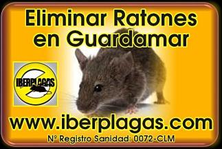 eliminar ratones en Guardamar