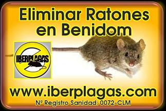Eliminar ratones en Benidorm