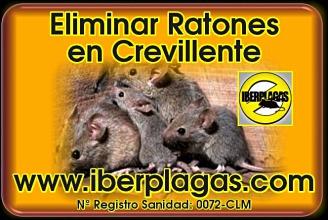 Eliminar Ratones en Crevillente