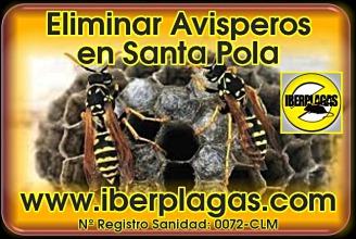 Eliminar Avispas en Santa Pola