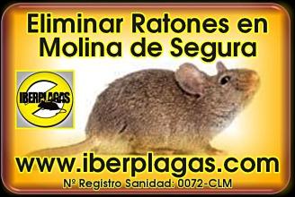 Eliminar ratones en Molina de Segura