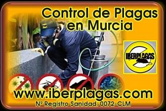 Control de Plagas en Murcia