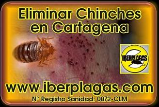 Eliminar Chinches de Cama en Cartagena