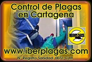 Control de plagas en Cartagena