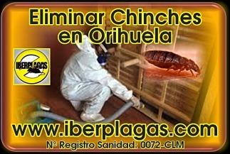 Eliminar chinches de cama en Orihuela