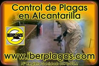 Control de Plagas en Alcantarilla