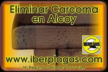 Eliminar Carcoma en Alcoy